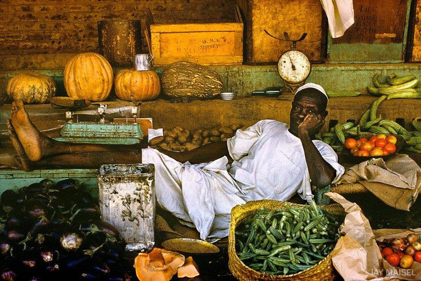 Veg_man_Sudan_1024x1024